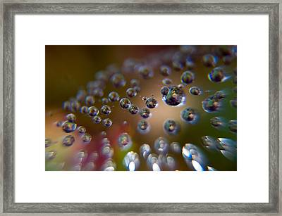 A Molecular Convention Framed Print by Dave Byrne