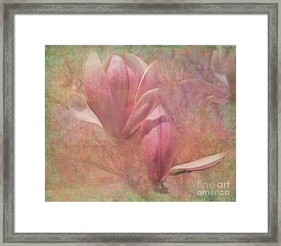 A Peek Of Spring Framed Print by Arlene Carmel