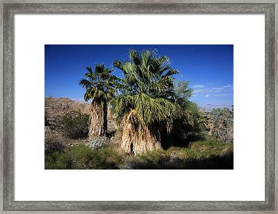 A Weight Is Lifted Framed Print by Laurie Search