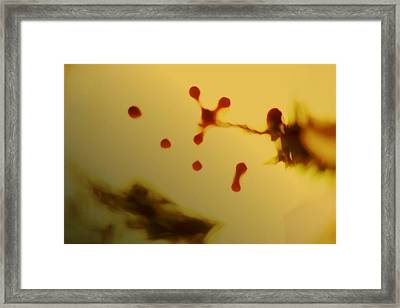 A1 Framed Print by Rakesh Iyer