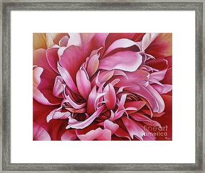 Abstract Peony Framed Print by Paula Ludovino