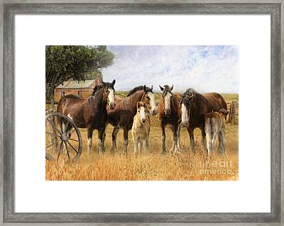 Always And Forever Framed Print by Trudi Simmonds