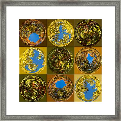 Framed Print featuring the photograph  Autumn  Spheres by Denise Beverly