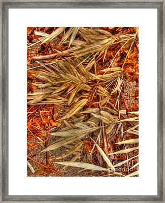 Bamboo Leaves Framed Print by Michelle Meenawong