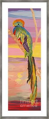 Beautiful Bird Quetzal Must Open  Framed Print