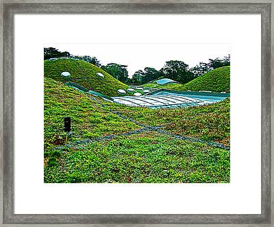 California Adacemy Of Sciences In Golden Gate Park In San Francisco-california  Framed Print