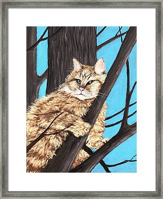 Cat On A Tree Framed Print