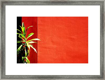 Challenging Circumstances Framed Print