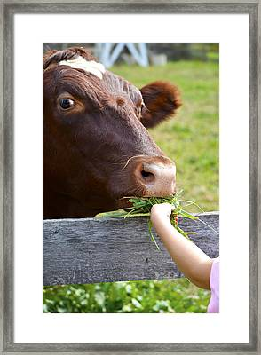 Childs Helping Hand Framed Print