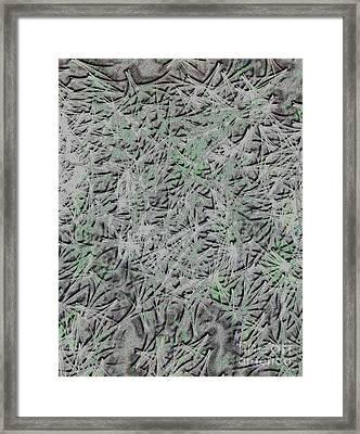 Complex Framed Print by Kenroy Rhoden