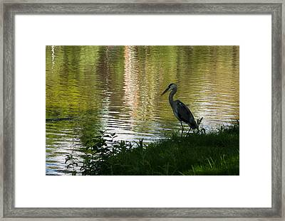 Framed Print featuring the photograph Contemplating Impressionist Paintings by Georgia Mizuleva
