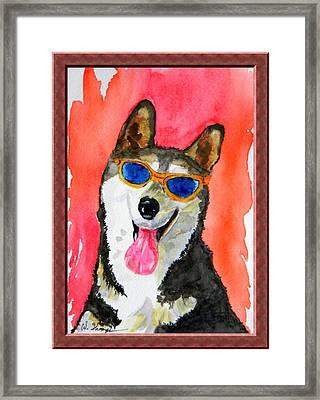Cool Husky Framed Print