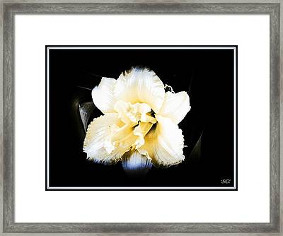 Daylily Framed Print by Michelle Frizzell-Thompson