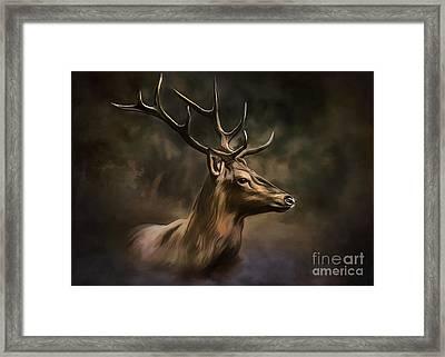 Deer Framed Print by Andrzej Szczerski