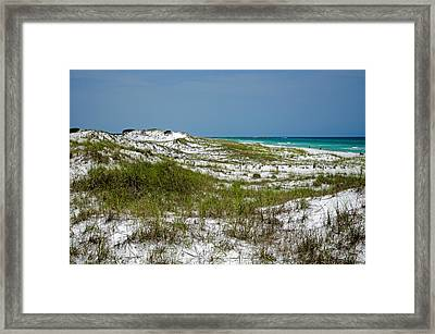 Framed Print featuring the photograph  Dunes    Panama City Beach  by Susan  McMenamin