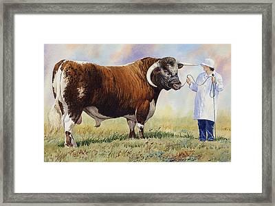 English Longhorn Bull Framed Print by Anthony Forster