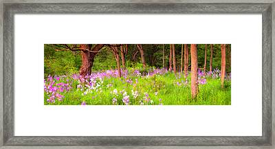 Enon Valley  2 Framed Print