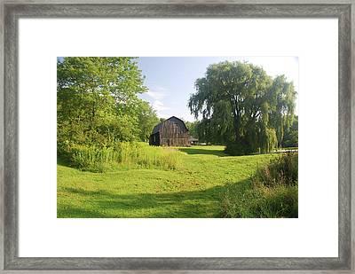 Evergreen Trails 7523 Framed Print