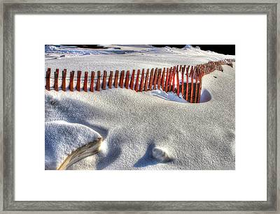 Fence Sculpture Framed Print
