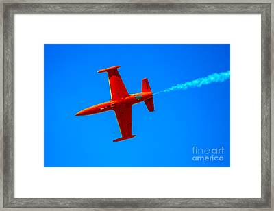 Firecat Framed Print by Robert Bales