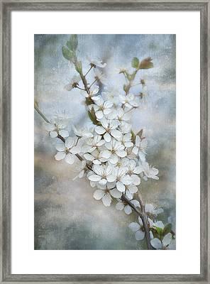 Flowering Tree Framed Print by Gynt Art