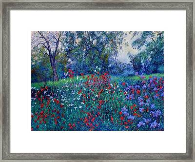 For Peace Oil Painting Framed Print by Abid Khan