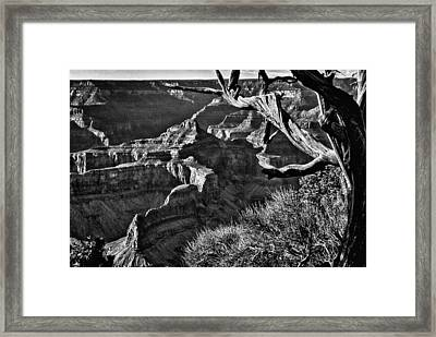 Grand Canyon Hermit View Framed Print by Bob and Nadine Johnston