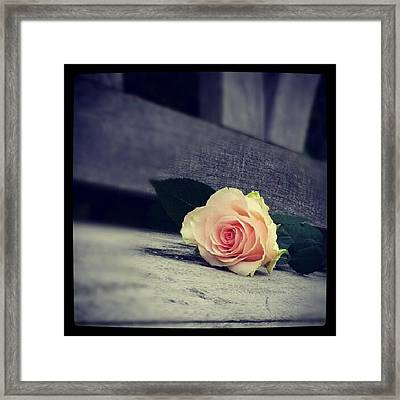 Gray In Romantik Framed Print