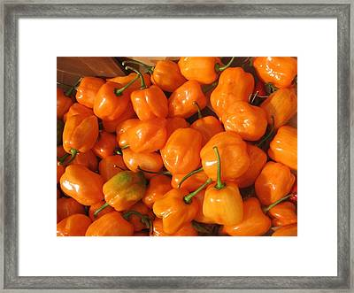 Framed Print featuring the photograph  Habanero Peppers by Deb Martin-Webster