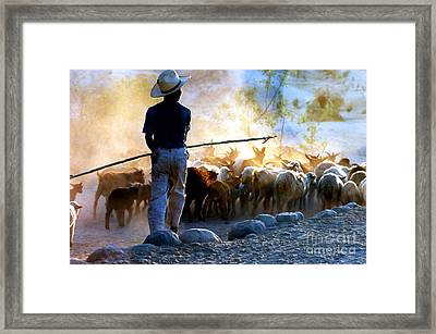 Framed Print featuring the photograph  Herder Going Home In Mexico by Phyllis Kaltenbach