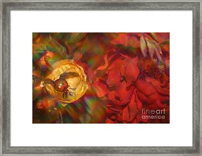 Framed Print featuring the photograph  Impressionistic Bouquet Of Red Flowers by Dora Sofia Caputo Photographic Art and Design