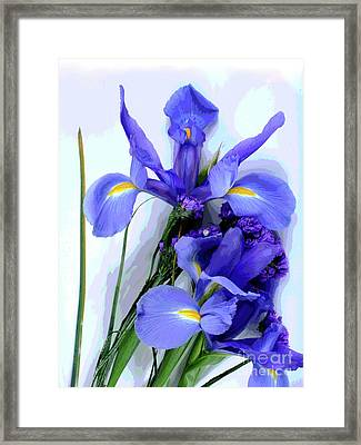 Iris -- Pretty In Purple-1 Framed Print
