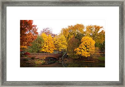 Japanese Gardens  Lake Sacajawea Park Framed Print by Beverly Guilliams