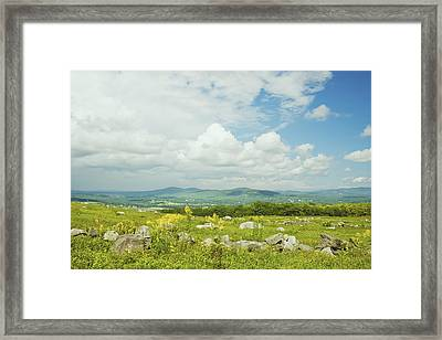 Large Blueberry Field With Mountains And Blue Sky In Maine Framed Print
