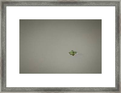 Lonely Frog Framed Print by Bradley Clay