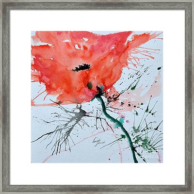 Lonely Poppy Framed Print by Ismeta Gruenwald
