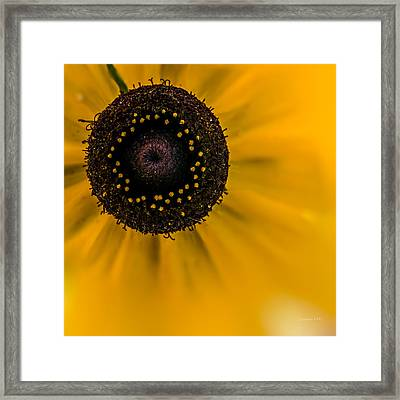 Looking At You Kid Framed Print