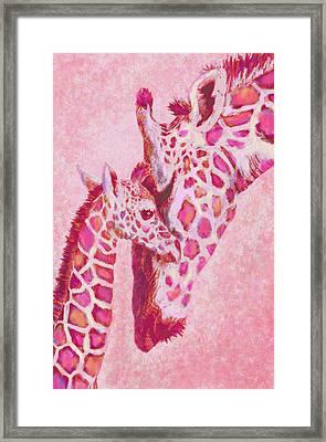 Loving Pink Giraffes Framed Print