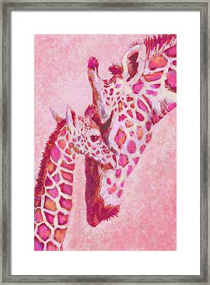 Loving Pink Giraffes Framed Print by Jane Schnetlage