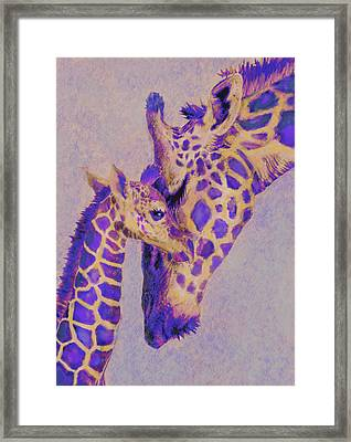 Loving Purple Giraffes Framed Print
