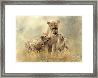 Mamma Framed Print by Trudi Simmonds