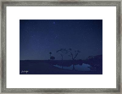 Meteor Shower In The Lowcountry Framed Print by Phill Doherty