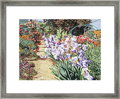 Monet's Garden Walk Framed Print by David Lloyd Glover