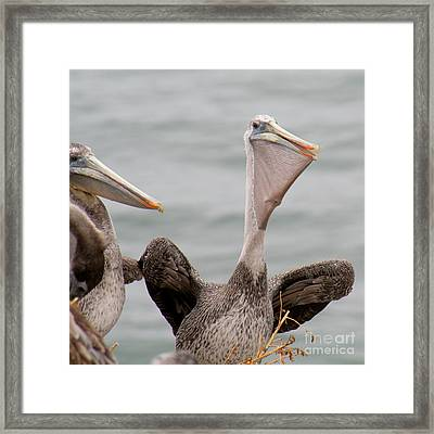 Framed Print featuring the photograph  My Fish by Bob and Jan Shriner