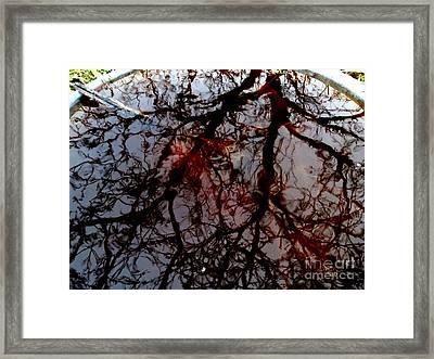 My Reflection Bucket Framed Print by Steven Valkenberg