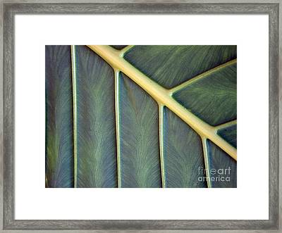 Framed Print featuring the photograph  Nervures by Michelle Meenawong