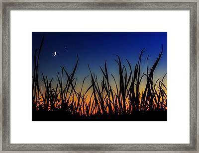 New Beginnings And Venus Smiles Framed Print by Sylvia J Zarco