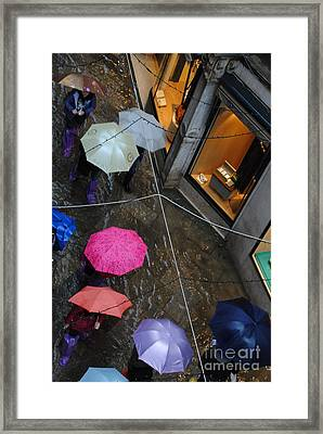 Not Ready For Shopping Framed Print by Jacqueline M Lewis