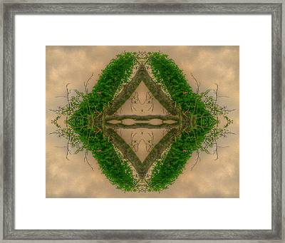 Orchard In The Sky Framed Print