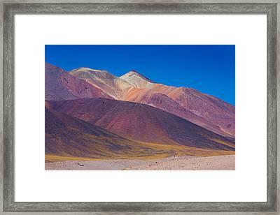 Painted Atacama Framed Print